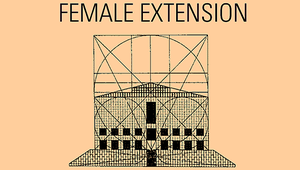 Female extension